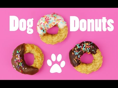 How to make DOG DONUTS WITH CHICKEN - DIY Dog Food by Cooking For Dogs & Charli's Crafty Kitchen