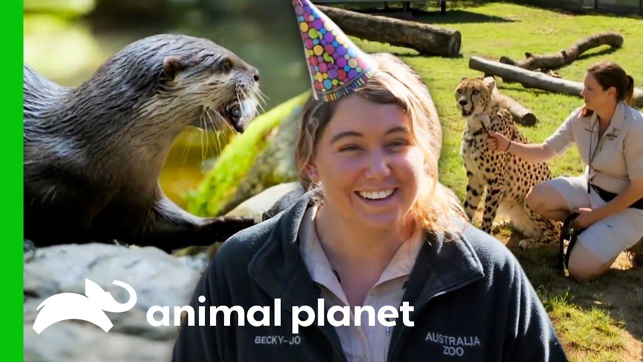 Australia Zoo's Care Programs & Fun Activities!   Crikey! It's The Irwins
