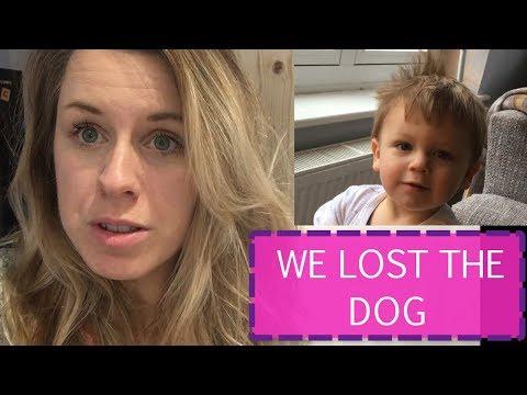 WE LOST THE DOG | A DAY IN THE LIFE OF A MOM OF 2 | MUM OF 2