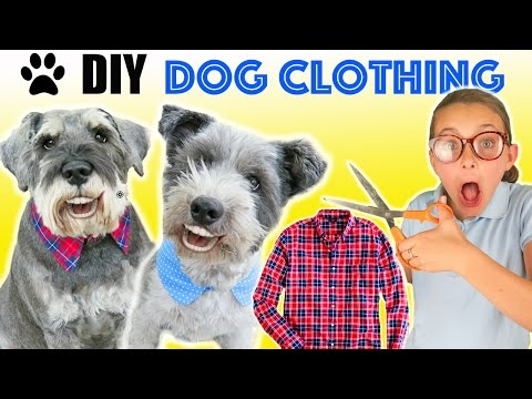 How To Make DIY Funny Upcycled Dog Clothes | Dog Collar Clothing tutorial | Kids Cooking and Crafts