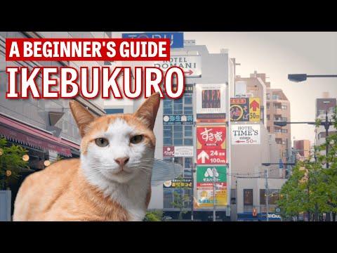 A Beginner's Guide to Ikebukuro