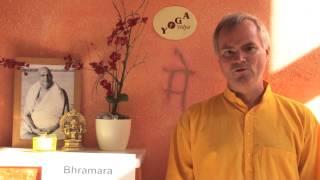 Bhramara -- Biene -- Yoga Vidya Lexikon