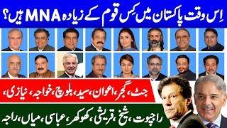 How many MNA of Political Families in Pakistan - Bloch, Syed, Jutt , Sheikh, Gujjar , Rana-Rajput