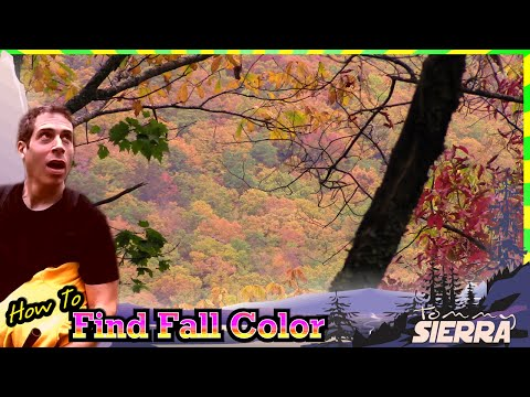 How to Find Fall Color!