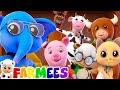 Animal Sound Song Kindergarten Nursery Rhymes By Farmees
