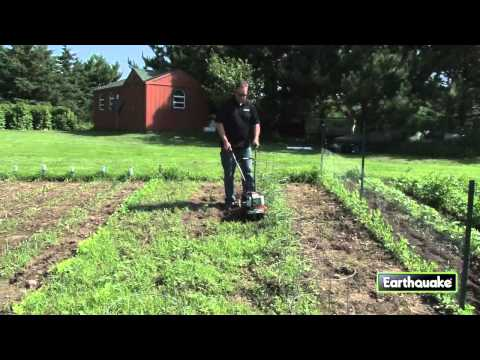 Removing weeds with a MC43 Mini Cultivator