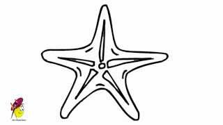 Star Fish How To Draw A Fish Starfish Easy Drawing