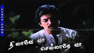 Nilaavey Vaa Song | Mohan,Revathi | Mouna Raagam Movie | S.P.B Hits at Ilayaraja Music