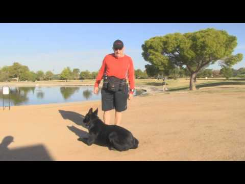 John and his German Shepherd