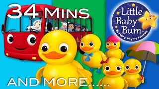 """""""Five Little Ducks"""" 