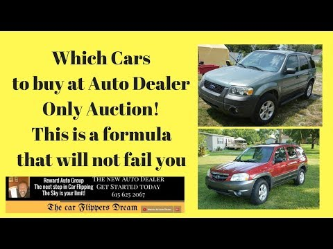 Which cars to buy at auction