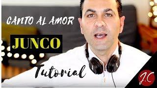 CANTO AL AMOR DE JUNCO, TUTORIAL. Jeronimo de Carmen-Guitarra-Flamenca