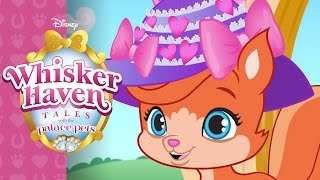 Hat's a Wrap! | Whisker Haven Tales with the Palace Pets | Disney Junior