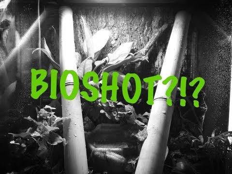 Adding BioShot. Shots, shots, shots for your vivaria?!?