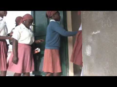 The State Education Sector Project Nigeria