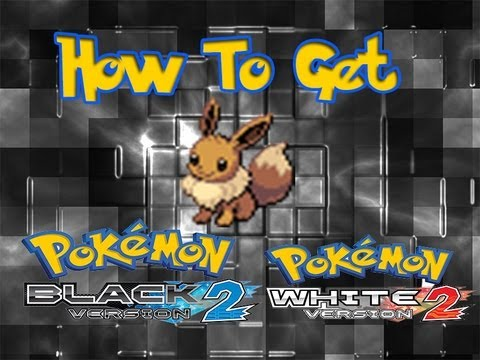 Pokemon Black & White 2 - How To Get a Hidden Ability Eevee