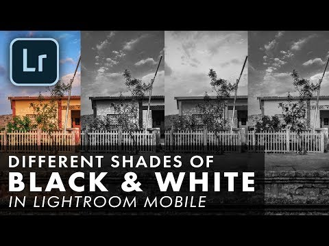 Different Shades of Black and White in Lightroom Mobile | Android | iPhone | iOS