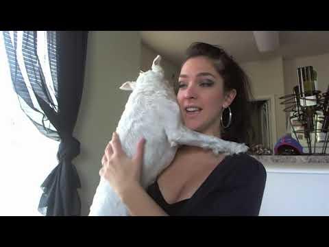 Aquarius Ascendant/Rising in Astrology