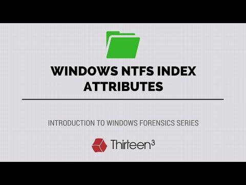 Windows NTFS Index Attributes ($I30 Files)