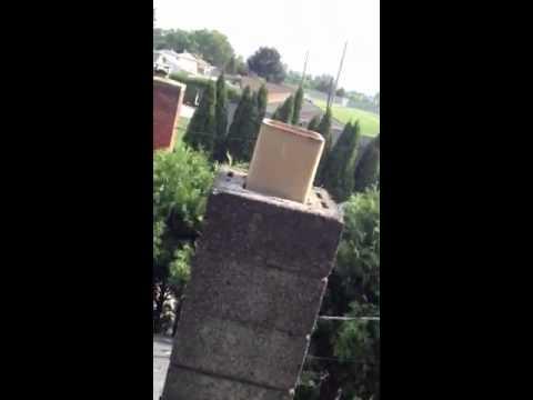 Hood Rat Chimney Removal