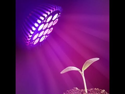 E27 24W 12 Led Full Spectrum Lamp Light Bulb Flower & Plants & Seedlings Grow Greenhouse Hydroponics