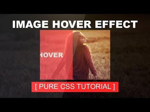 CSS image Hover effect -  Css Tutorial - Pure Css3 Hover Effect - Image Overlay - Plz SUBSCRIBE Us