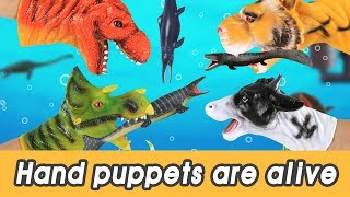 [EN] #94 Scary friends appeared! hand puppets are alive! kids education, learn animals nameㅣCoCosToy