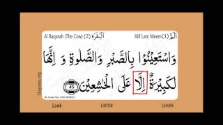 Surah Al Baqarah, The Cow, Surah 002, Verse 045, Learn Quran word by word translation