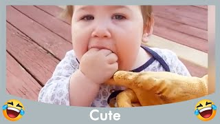 Top Funny Baby Playing With Animal Complilation