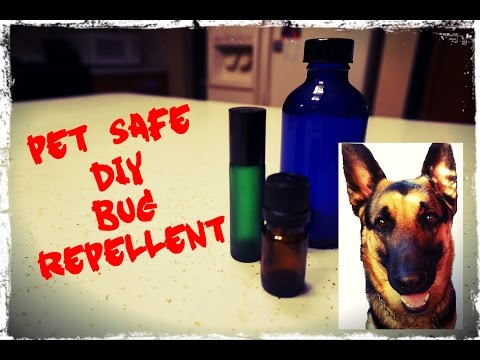 DIY: The Best Natural Dog Friendly Bug Repellent for Ticks,  Fleas, & Other Pesky Insects!