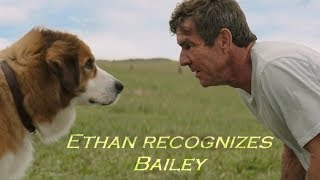 A Dogs Purpose - Ethan recognizes Bailey (HD)