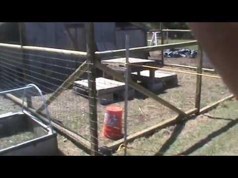 goat fencing