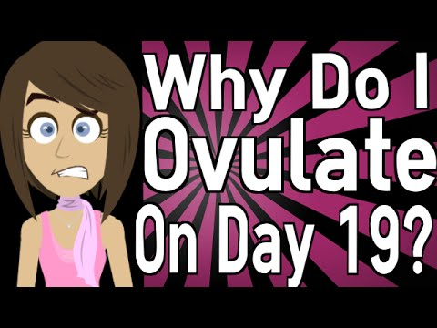 Why Do I Ovulate on Day 19?