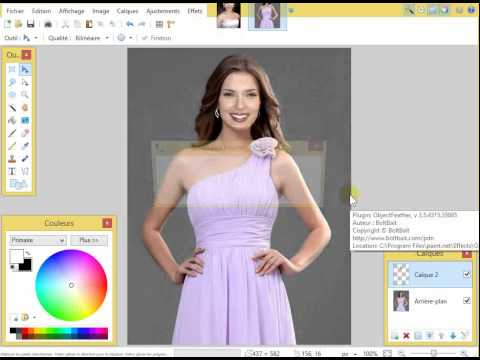 How to change face, paint.net Lesson #19