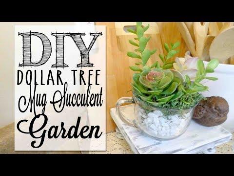DIY Mug Succulent Garden | Dollar Tree Craft