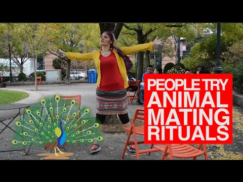People Try Animal Mating Rituals – Hilarious NYC Pranks!