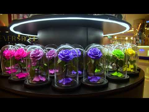 Forever Rose London in Marina Mall, Abu Dhabi