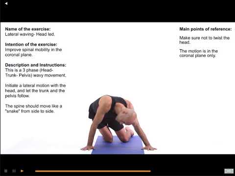 Spine mobility techniques