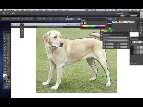 How to Remove Background from an Image in Adobe Illustrator