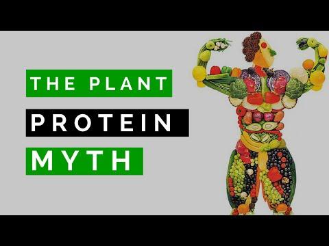 The Plant / Vegan Protein Myth SPEAKING VEGAN #006