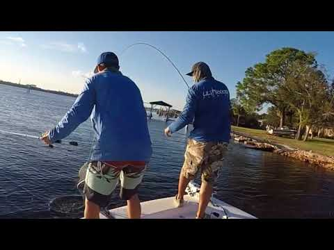North Florida Flounder Fishing  / Yellabone
