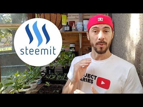 ★ How to: Make Money Blogging (The Ultimate Guide to Steemit)