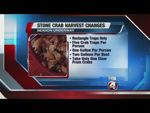 NEW Stone Crab Harvest Rules