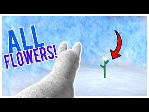 Wolves Life 2 // How To Find All The Flowers!