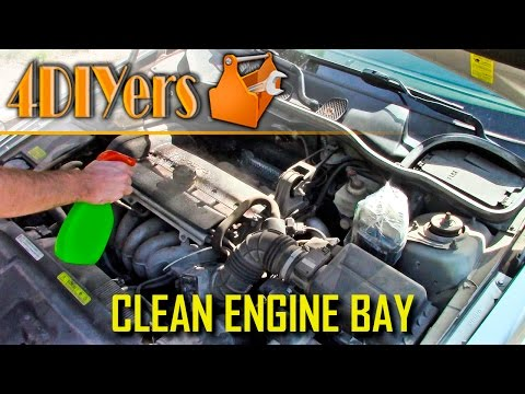 DIY: How to Clean an Engine Bay