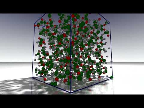 Simulations of polymer (HD)