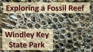 Florida Keys Geologic History: Windley Key Fossil Reef Geologic State Park