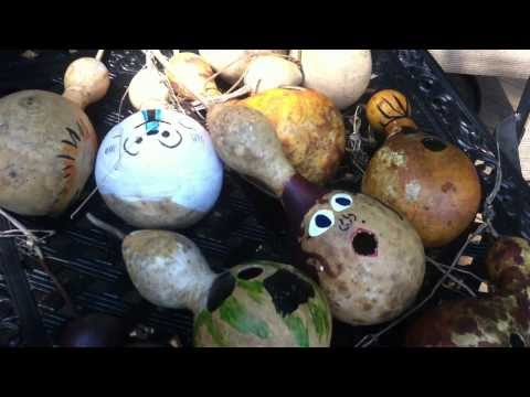 Painting Gourds