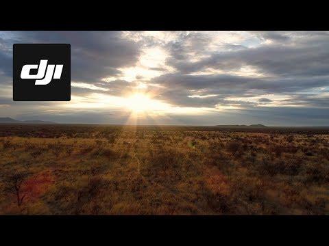 DJI Stories - Behind the Scenes: Kingdom of the Wild