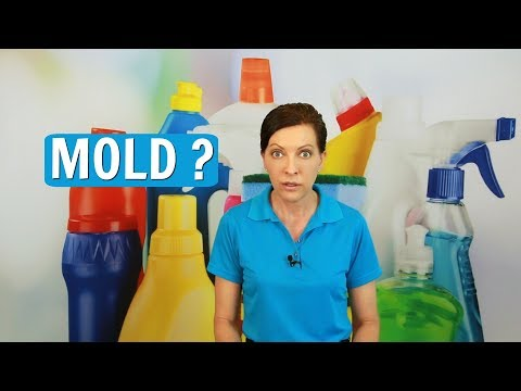 Mold - How to Prevent Mold and Mildew